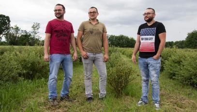 Marin Medić, en rouge, et ses frères, au milieu de leurs plantations de baies à Golinci.