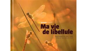 «Ma vie de libellule».