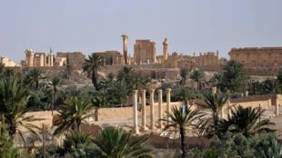 Palmyre (Syrie), le 18 mai 2015, au lendemain de la prise par le groupe EI du contrôle de plusieurs secteurs dans le nord de la ville.