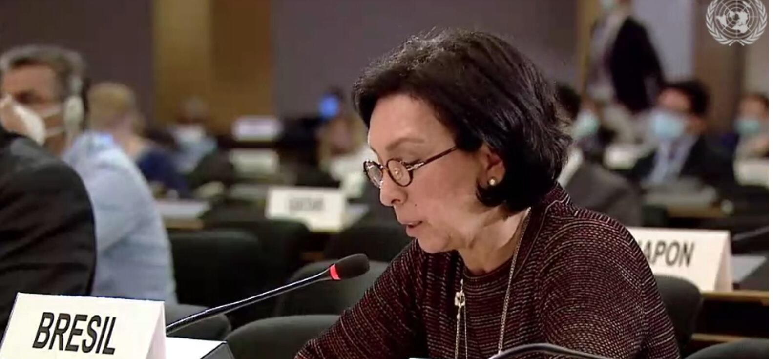 A embaixadora do Brasil Maria Nazareth Farani Azevedo