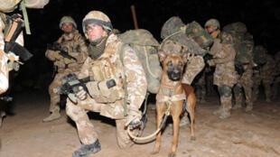 Soldats britanniques engagés dans l'opération Moshtarak à Marjah en Afghanistan, le 13 fevrier 2010.