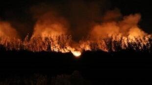 آتش سوزی بوشهر