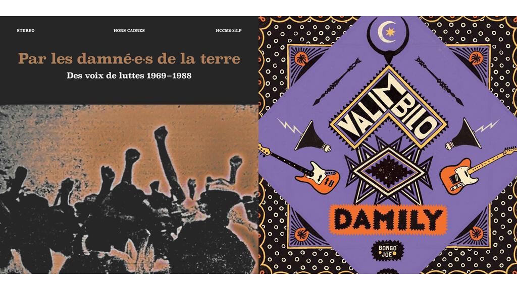 Couverture des albums «Les damnés de la terre» (Rocé) et «Damily Valimbilo» (Damily).