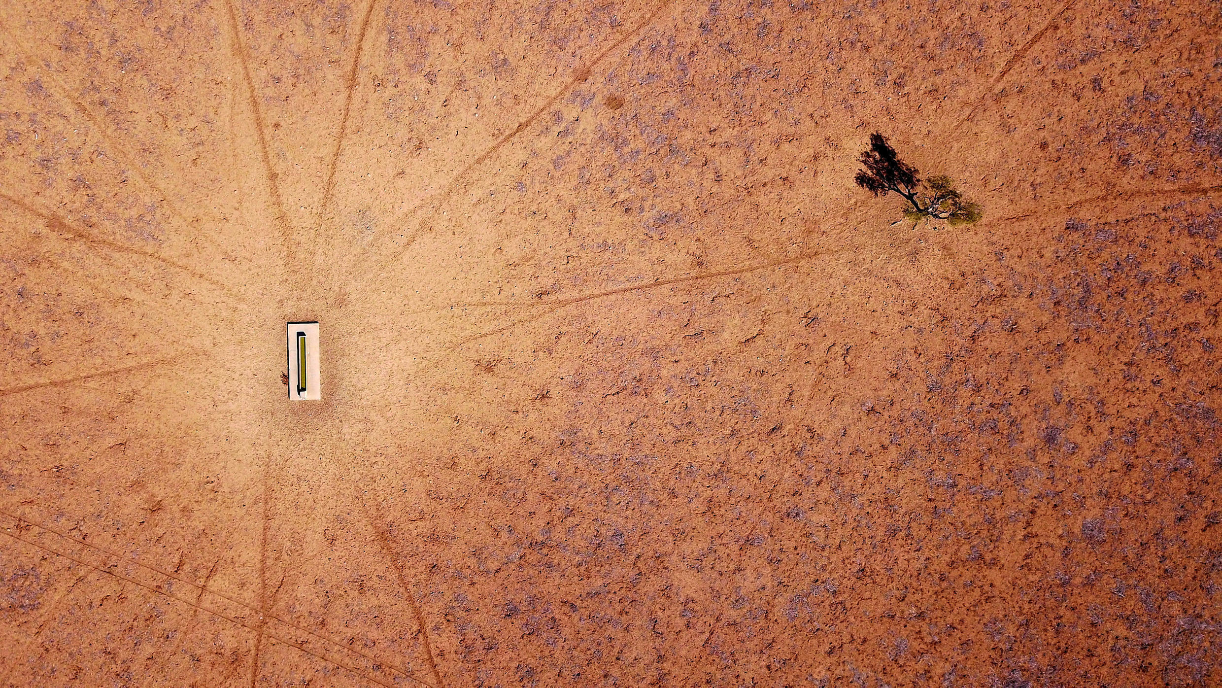 A lone tree stands near a water trough in a drought-effected paddock on Jimmie and May McKeown's property located on the outskirts of town of Walgett, in New South Wales, Australia