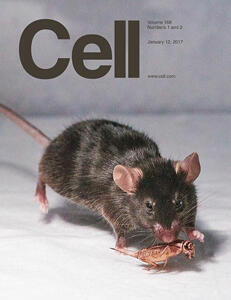 Portada de la revista Cell de enero 2017.