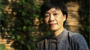 北京電影學院教授崔衛平