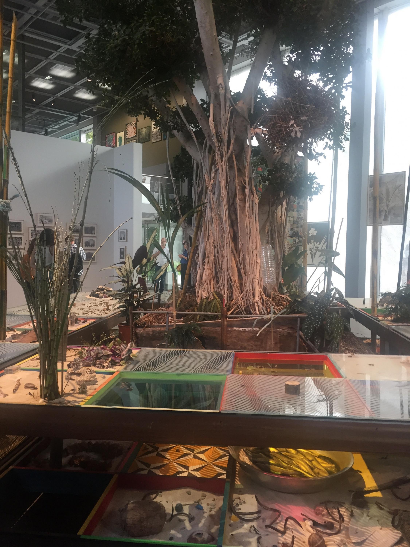 Instalação de Luiz Zerbini, na Fundação Cartier, em Paris.