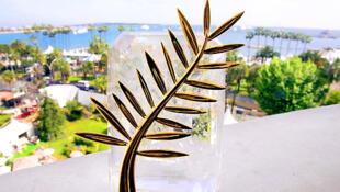La Palme d'or de Cannes