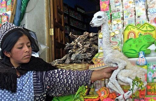 Une Indienne vend des foetus de lama au marché des sorcières de La Paz en Bolivie.