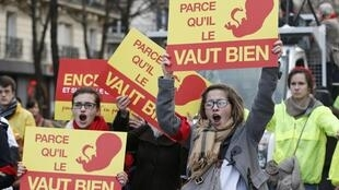 Акция против абортов в Париже, январь 2014 г.