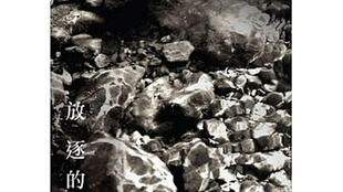 文海的書著《放逐的凝視——見證中國獨立紀錄片》封面