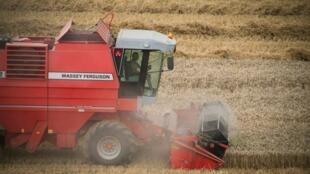 Pelo menos 500 agricultores se suicidaram na França entre 2007 e 2009