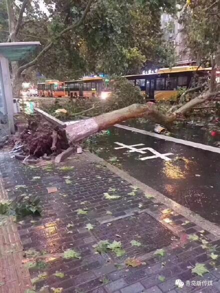 青島遭雨雹襲擊