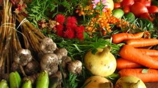 Nông phẩm sạch (bio)