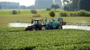 Agricultor pulveriza pesticidas na França.