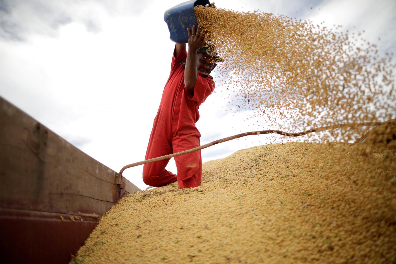 Image d'archive RFI: La Niña est de retour et c'est ce phénomène météo qui crée la flambée que l'on observe sur les marchés des céréales et des oléagineux depuis le milieu de l'année 2020 (image d'illustration).