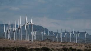 Le parc éolien du lac Turkana, dans le nord du Kenya, équipé de 365 éoliennes, ici le 29 juin 2018.