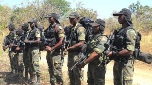 Des militaires camerounais (ph. archives décembre 2012).
