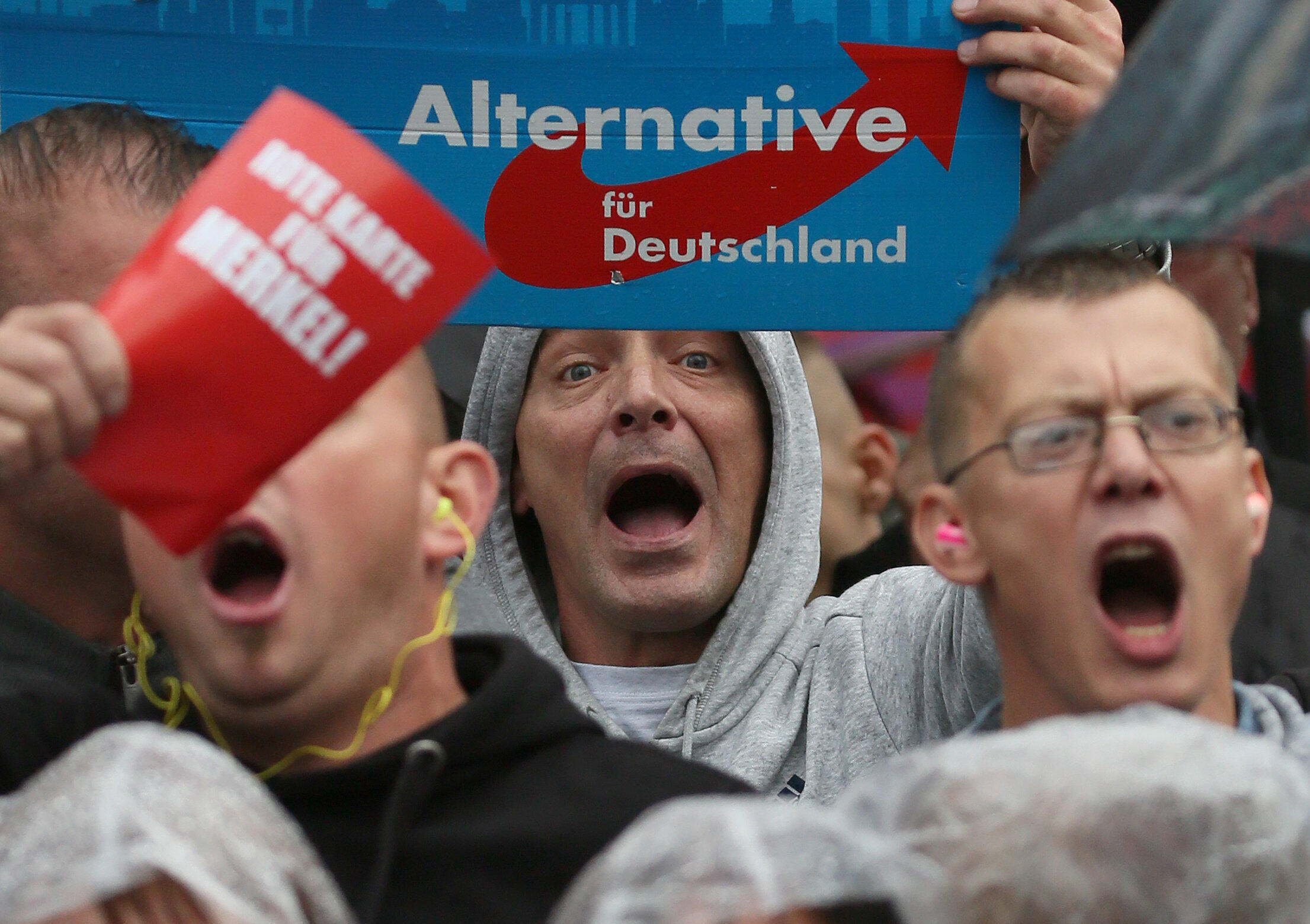 Allemagne - AfD