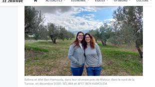 Tunisie productrices de l'huile d'olive Bio