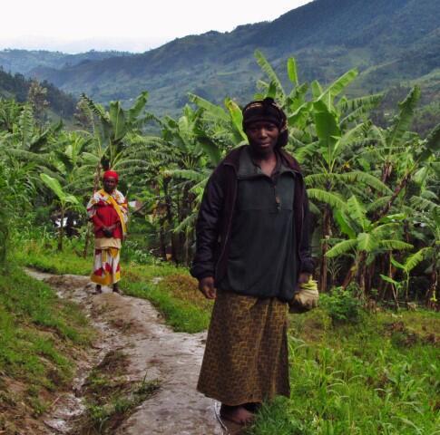 Le Rwanda, petit pays vallonné et très densément peuplé, est vulnérable à l'érosion et aux glissements de terrain.
