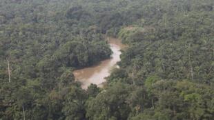 Kisangani, en République démocratique du Congo : vue aérienne de la forêt et du fleuve Congo.