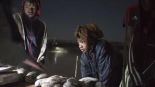 Basée à Madagascar, la société IOT a développé l'aqualculture des concombres de mer.