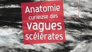 «Anatomie curieuse des vagues scélérates», de Michel Olagnon.