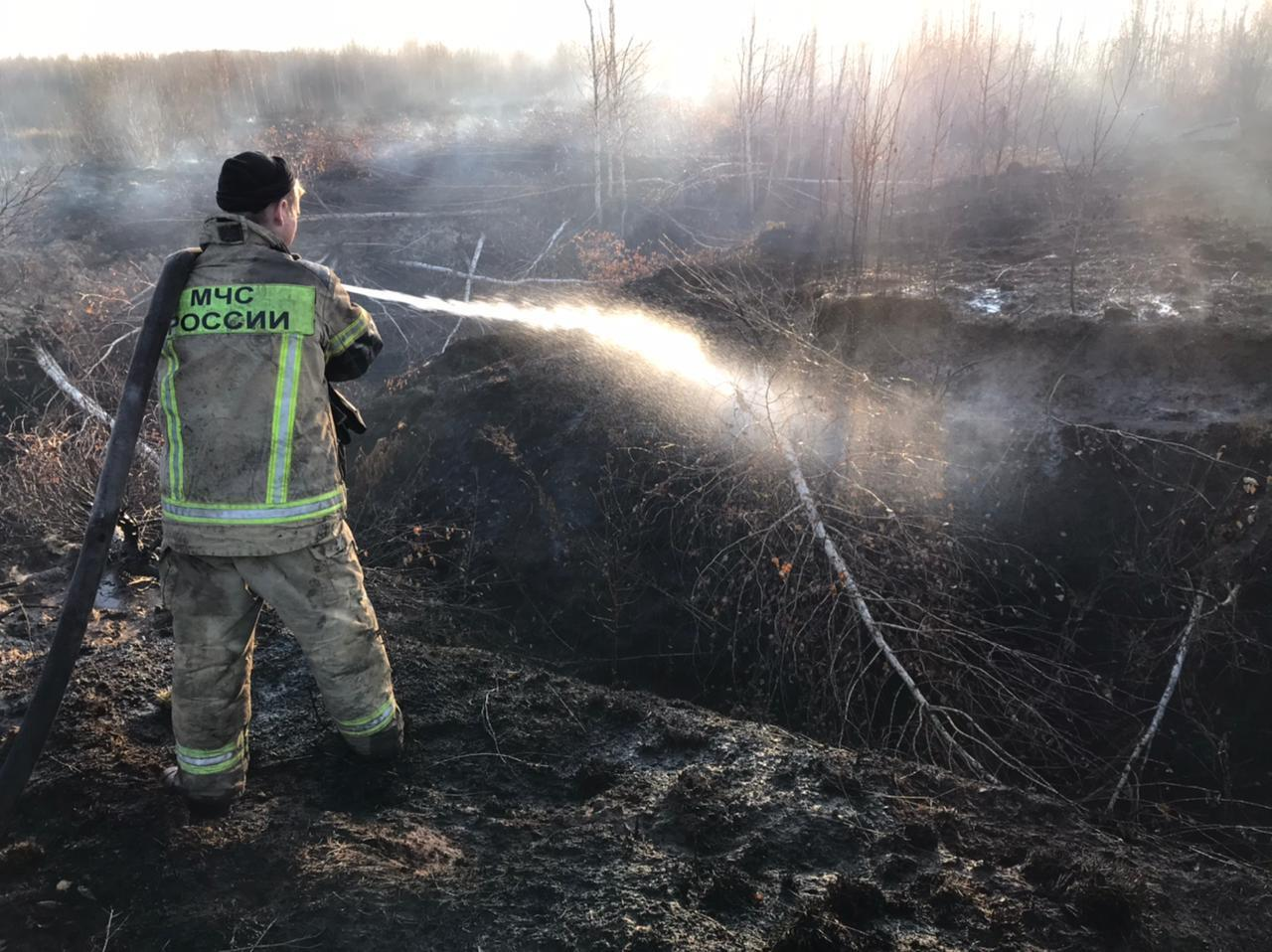 Russia peat fires