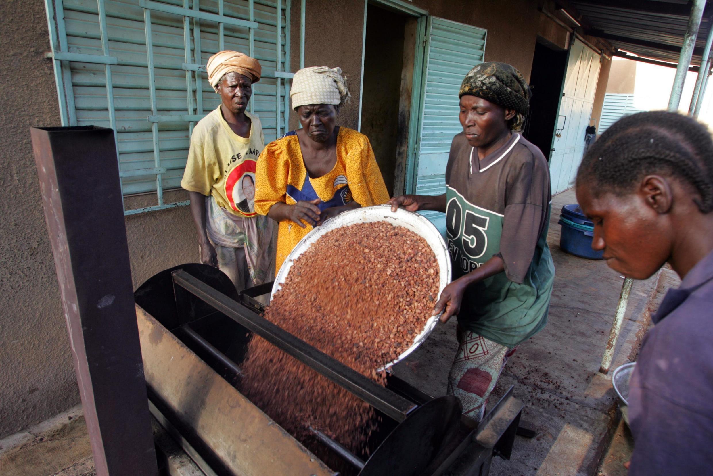 Des femmes burkinabè torréfient des noix de karité, dans un village de Tanghin Dessouri, à 25 km de Ouagadougou, la capitale.