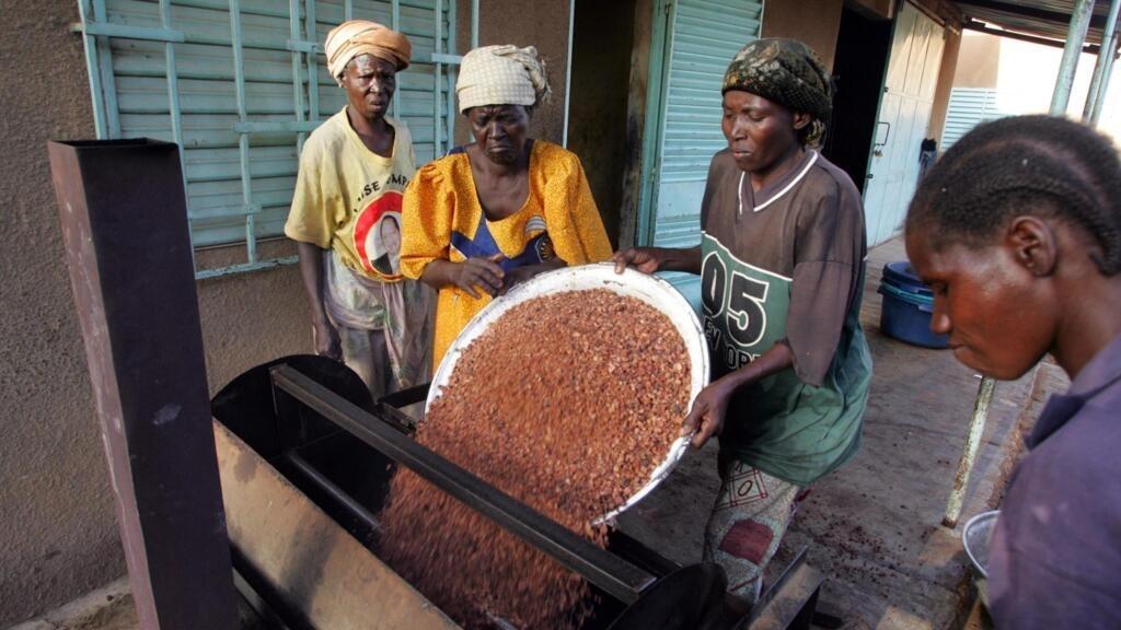 Burkina Faso: la Banque africaine de développement soutient les producteurs de karité