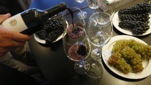 Período de colheita das uvas e inicio da produção de vinhos no Correio dos Ouvintes.