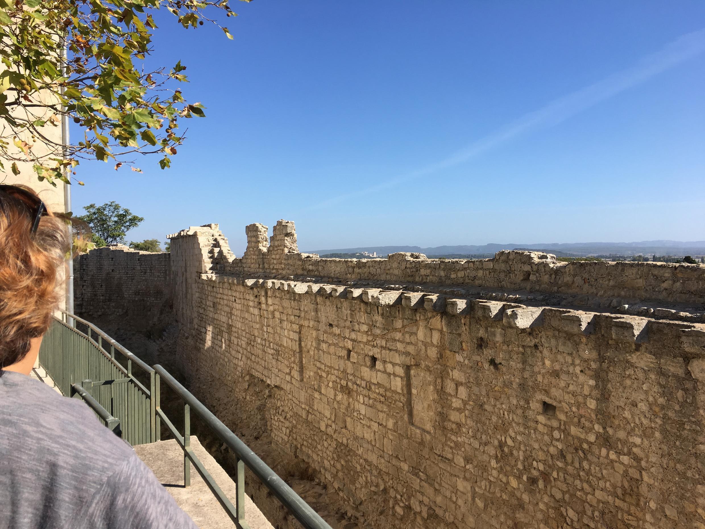 Cécile Bénistant, notre guide, devant les remparts d'Arles.