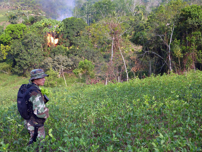 Un soldado peruano patrulla en un campo de coca durante un operativo de destrucción de un laboratorio de cocaina, en el valle del Apurimac (VRAEM), en el sudoeste del país (Foto de ilustración).