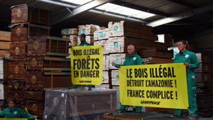Les militants de Greenpeace ont mis « sous scellés » des grumes de République démocratique du Congo et des planches d'ipé, un bois du Brésil.