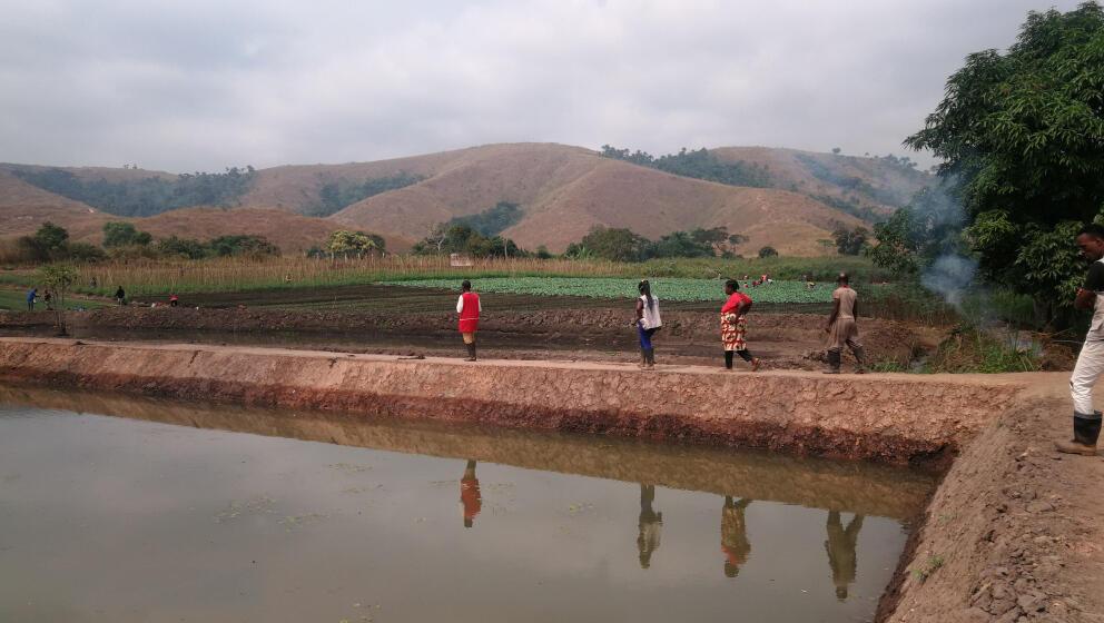Vue d'une station piscicole à Mindouli dans le Pool.