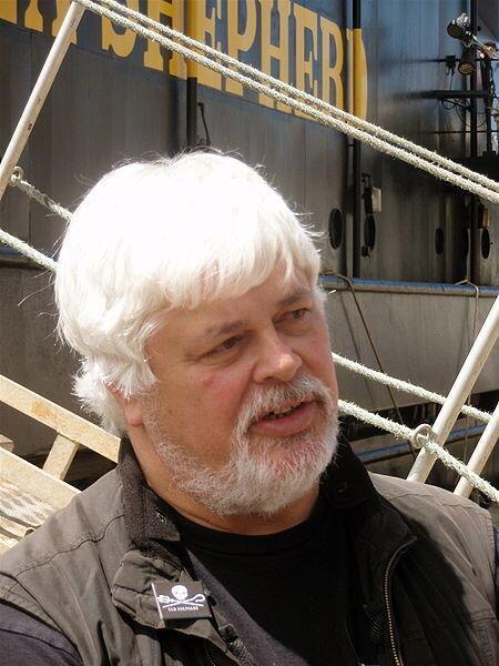 Paul Watson, le fondateur de l'ONG Sea Shepherd.