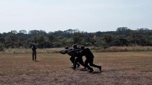Une patrouille de rangers pendant des exercices d'entraînement dans la réserve de Chinko.