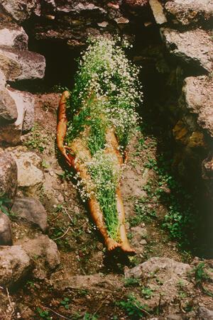 """""""Imágen de Yágul"""", 1973/2018 Ana Mendieta."""