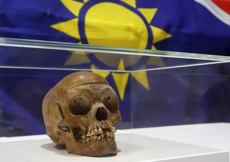L'un des 20 crânes de guerriers héréros et namas, exposé ici lors d'une cérémonie à l'hôpital de la Charité de Berlin, le 30 septembre 2011.