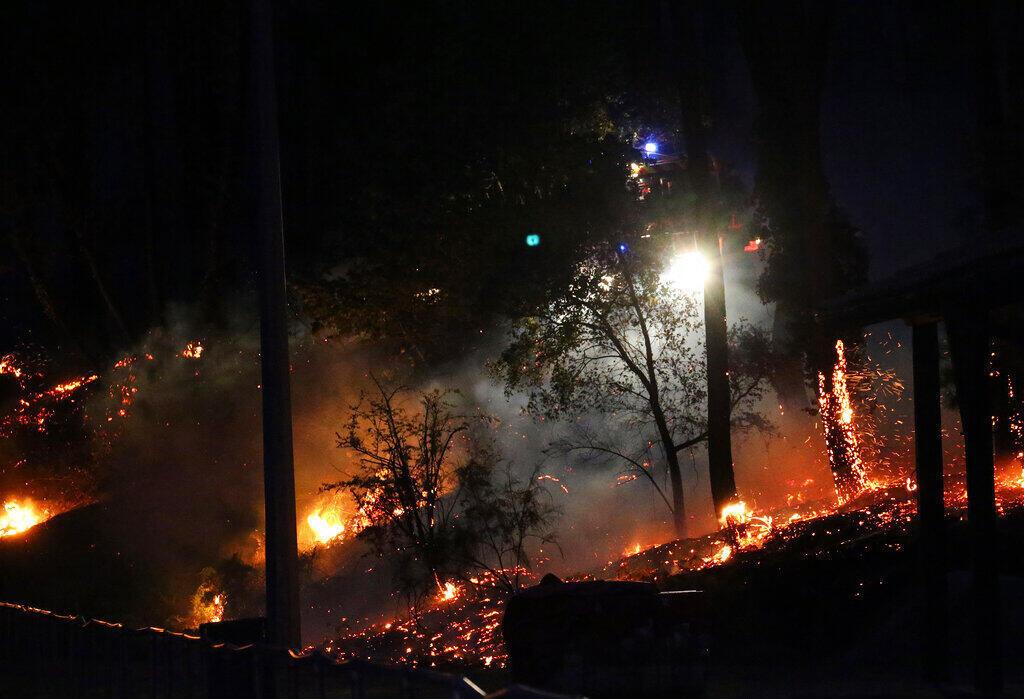 法国比利牛斯省Anglet镇的165公顷森林被烧毁。2020年7月30日