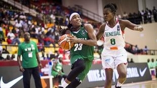 Le Nigeria et le Sénégal se retrouvent en finale de l'Afrobasket après s'être croisés en poule.