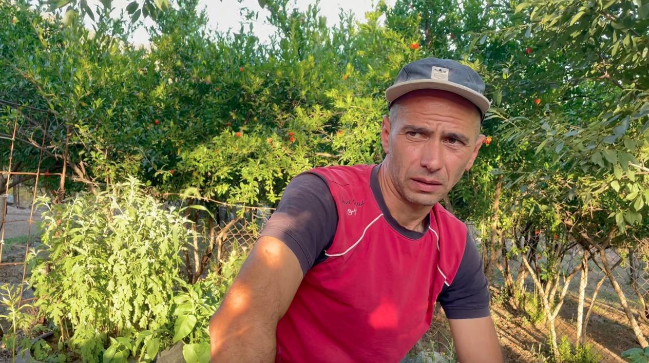 До войны житель Нрнадзора Ваграм занимался скотоводством, а теперь остались только гранатовые плантации. Сюникская область. Армения. 14 июня 2021 год