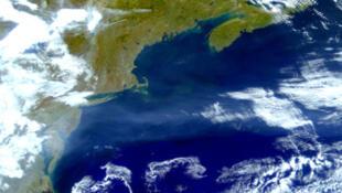 Image satellite prise à l'est des Etats-Unis du Gulf Stream, courant chaud qui remonte vers le Nord.
