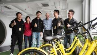 鼎盛时期的ofo曾得到苹果CEO蒂姆·库克的访问和支持资料图片