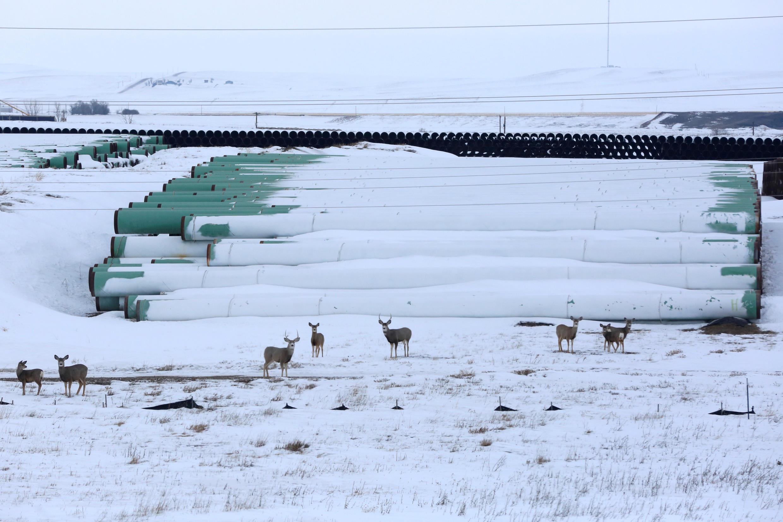 Des tuyaux du projet d'oléoduc Keystone XL stockés dans un dépôt à Gascoyne, Dakota du Nord, en janvier 2017.
