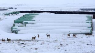 dépôt de stockage oléoduc Keystone XL Dakota nord USA