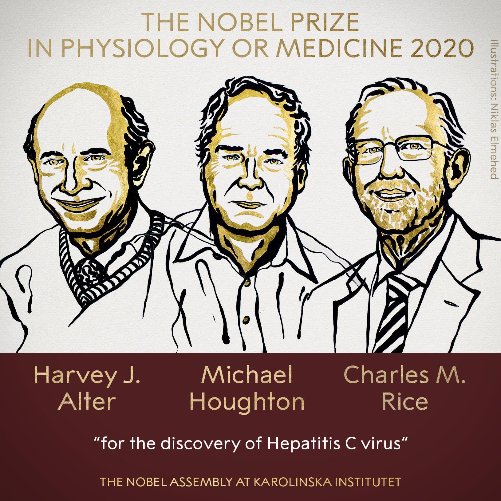 美国病毒学家阿特尔(Harvey J. Alter)、莱斯(Charles M.Rice)、及英国生化学家贺顿{Michael Houghton)三位学者以发现C型(丙型)肝炎病毒方面的成就,共同获得2020年诺贝尔医学奖。