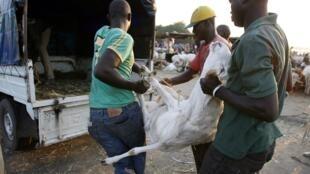 Sur un marché d'Abidjan. La Tabaski, nom de l'Aïd el-Kébir en Afrique de l'Ouest, est la fête la plus importante de l'islam.