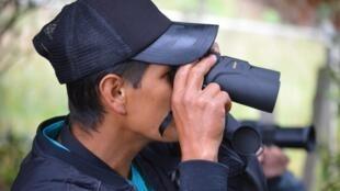 Exercice d'observation des oiseaux dans le parc naturel national de l'île de Corota sur les rives du lac de la Cocha à Pasto en Colombie.